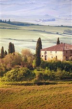Preview iPhone wallpaper Tuscany, countryside, trees, houses, fields, summer, Italy