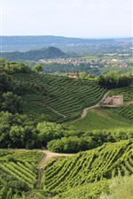 Preview iPhone wallpaper Village, countryside, plants, green, mountains, houses, Italy, Treviso