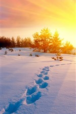 Preview iPhone wallpaper Winter, thick snow, footprint, sun rays