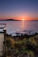 Preview iPhone wallpaper Wood path, sea, sunset