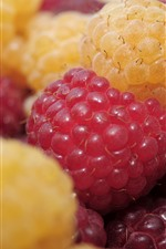 Yellow and red raspberries close-up