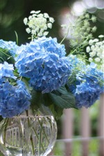 Preview iPhone wallpaper Blue hydrangea flowers, vase, fence