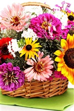 Colorful flowers, basket, white background
