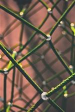 Green rope, mesh, struct