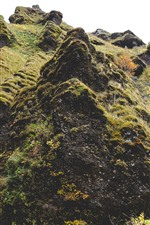 Preview iPhone wallpaper Mountain, moss, grass, rocks