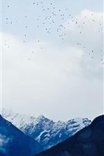 Vorschau des iPhone Hintergrundbilder Berge, Vögel, Himmel