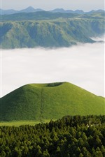Mountains, forest, green, fog, Kumamoto, Somme, Japan
