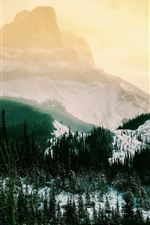 Preview iPhone wallpaper Mountains, snow, trees, fog, winter