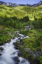 Norway, forest, creek, rocks, mountain, hut, green