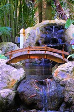 Parque, ponte, riacho, pedras, pequenas paisagens