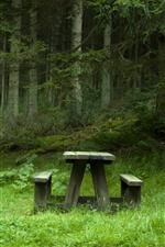 Preview iPhone wallpaper Park, trees, green, table, chair