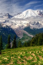 Preview iPhone wallpaper Rainier, Washington, mountains, trees, snow, clouds, nature landscape