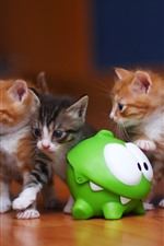 Preview iPhone wallpaper Some kittens and frog toy