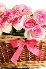 Cesta, muitas rosas rosa, fundo branco