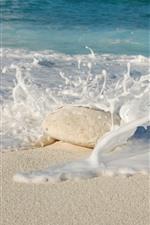 Praia, mar, espuma, pedra