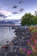 Preview iPhone wallpaper Flowers, rocks, pier, lake, trees