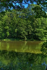 Preview iPhone wallpaper Germany, river, trees, green, nature scenery