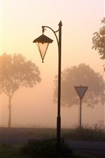 Preview iPhone wallpaper Lamp, road, trees, fog, dawn