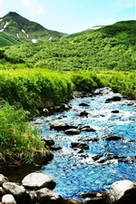 Mountain, green, bushes, grass, creek, rocks, summer