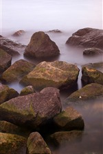 Preview iPhone wallpaper Some rocks, coast, fog, morning