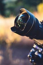 Câmera, lente, natureza