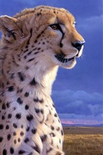 Preview iPhone wallpaper Cheetah, face, wildlife, clouds, dusk