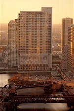 Chicago, city, skyscrapers, sunshine, morning, USA