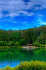 Forest, green, lake, blue sky, clouds