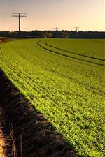 Preview iPhone wallpaper Green fields, power lines, road, grass
