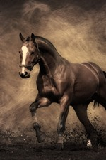 Preview iPhone wallpaper Horse, dust, creative