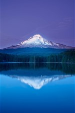 Preview iPhone wallpaper Mountain, snow, lake, water reflection, trees, beautiful nature landscape