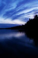 Night, lake, trees, calm, silhouette