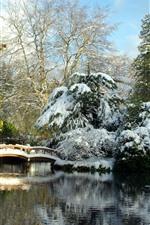 Aperçu iPhone fond d'écranParc, neige, pont, cabane, lac, arbres, hiver