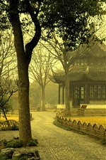 Park, trees, morning, fog, gazebo, China