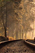 Preview iPhone wallpaper Railroad, track, trees, sun rays