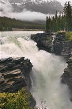 iPhone обои Деревья, водопад, брызги воды, природный ландшафт