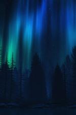 iPhone обои Северное сияние, деревья, ночь, силуэт
