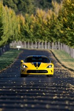 Dodge SRT Viper yellow car front view, road, trees