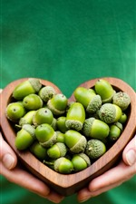 Preview iPhone wallpaper Girls hands, love heart, acorns