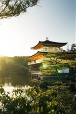Preview iPhone wallpaper Golden Pavilion Temple, lake, trees, sun rays, Japan