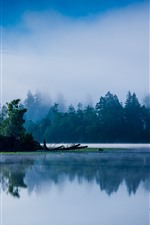Preview iPhone wallpaper Lake, calm, trees, fog, morning