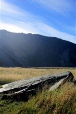 Preview iPhone wallpaper New Zealand, grass, rock, mountains, sun rays, blue sky