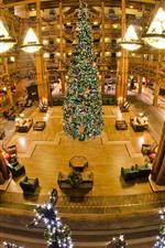 Grande árvore de Natal, salão, luzes