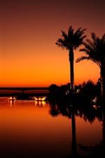 預覽iPhone桌布 迪拜,夜晚,河流,棕櫚樹,燈光,橋樑,剪影