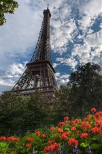 Preview iPhone wallpaper Eiffel Tower, flowers, sun rays