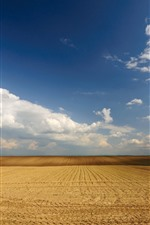 Preview iPhone wallpaper Field, lines, blue sky, white clouds