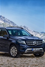 Mercedes-Benz blue car, mountains