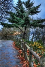 Preview iPhone wallpaper Road, trees, fence, river, botas, clouds