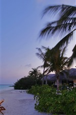 Preview iPhone wallpaper Beach, sea, palm trees, resort, lights, dusk