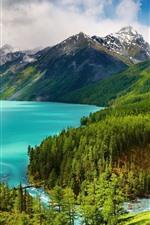 Bela natureza paisagem, declive, montanhas, árvores, lago